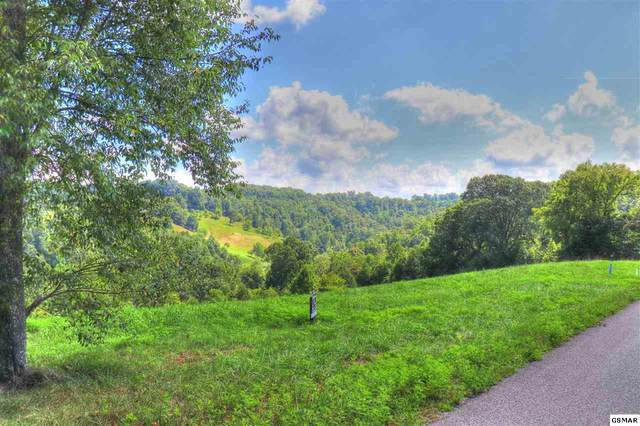 Lot 18 Smokey Quartz Blvd, New Tazewell, TN 37825 (#229799) :: Four Seasons Realty, Inc