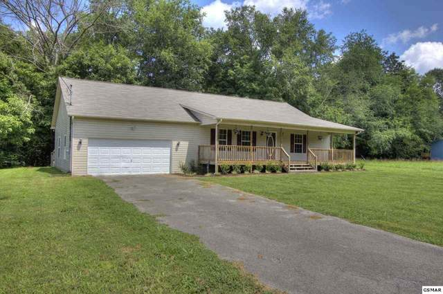 3341 Oma Lee Drive, Sevierville, TN 37876 (#229811) :: The Terrell Team