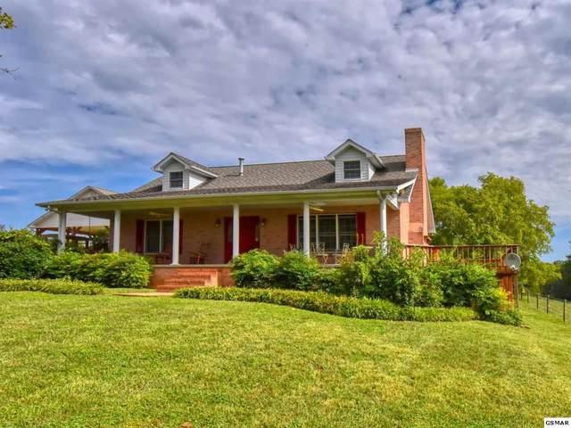 1754 Muddy Creek Rd, Dandridge, TN 37725 (#229824) :: Jason White Team | Century 21 Four Seasons