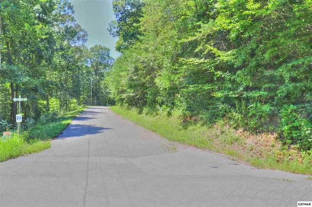 Lot 259 Big Ridge Point, Sharps Chapel, TN 37866 (#229828) :: Billy Houston Group