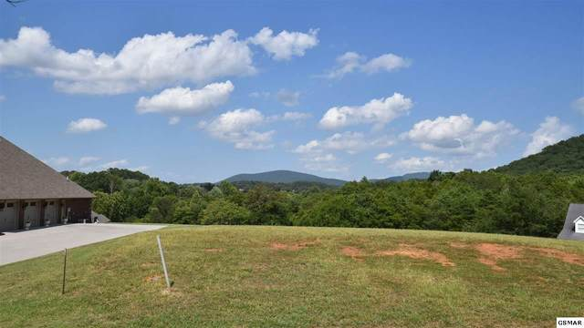 Lot 16 River Sound Drive, Sevierville, TN 37876 (#229854) :: The Terrell Team