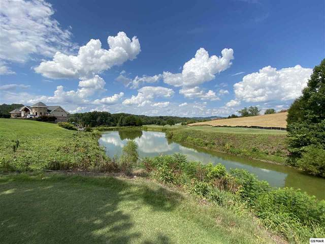 Old Knoxville Hwy Lot 8 Pheasant , Sevierville, TN 37876 (#229860) :: Prime Mountain Properties