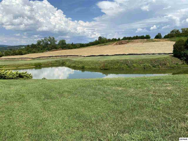 Old Knoxville Highway Lot 7 Pheasant , Sevierville, TN 37876 (#229861) :: Four Seasons Realty, Inc