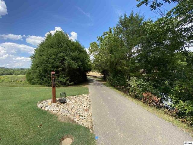 Old Knoxville Hwy Lot 6 Pheasant , Sevierville, TN 37876 (#229862) :: Jason White Team | Century 21 Legacy