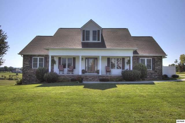 503 Monte Vista Lane, Dandridge, TN 37725 (#229878) :: Four Seasons Realty, Inc