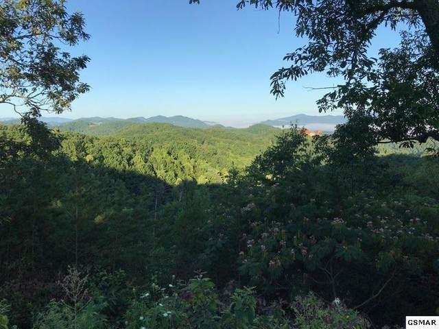 Lot 6 Pine Mountain Way, Sevierville, TN 37862 (#229879) :: The Terrell Team