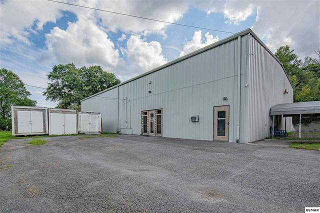 2646 Highway 116, Caryville, TN 37714 (#229883) :: Four Seasons Realty, Inc