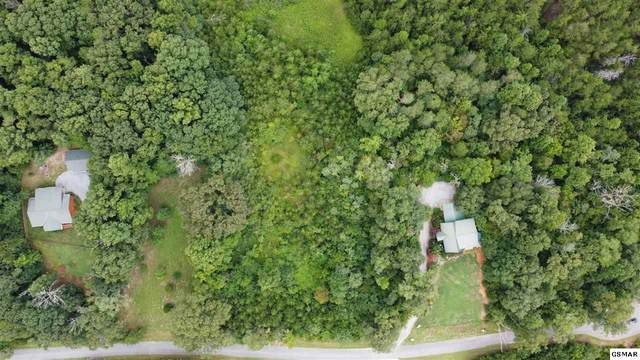 Lot 9 Clearview Dr Lot 9, Newport, TN 37821 (#229916) :: Billy Houston Group