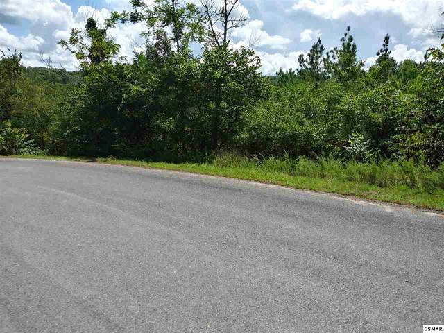 Fork Fork Horn Trail, Dandridge, TN  (#229925) :: Colonial Real Estate