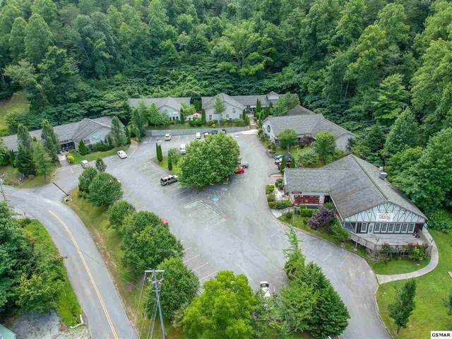170 Glades Rd, Gatlinburg, TN 37738 (#229946) :: The Terrell Team