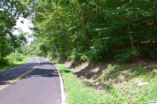 5.84 Acres Sugar Loaf Rd, Sevierville, TN 37876 (#229957) :: Four Seasons Realty, Inc