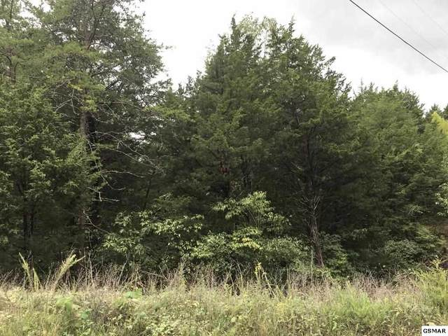Lot 48AB Buckhorn Rd, Sevierville, TN 37876 (#229963) :: Colonial Real Estate