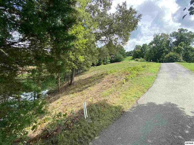 Bobwhite Trail Lot 1 Pheasant , Sevierville, TN 37876 (#229969) :: Tennessee Elite Realty