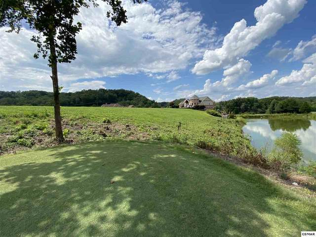 Bobwhite Trail Lot 2 Pheasant , Sevierville, TN 37876 (#229971) :: Tennessee Elite Realty