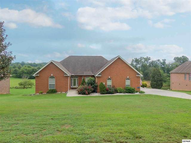 141 Harbour View Way, Kingston, TN 37763 (#230001) :: Colonial Real Estate