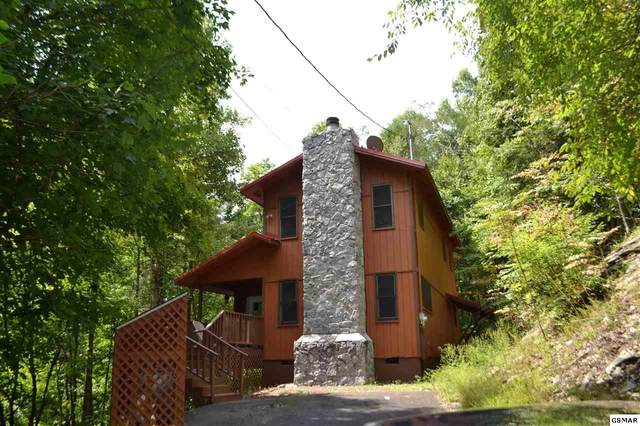 3062 N Clear Fork Road Rustic Retreat , Sevierville, TN 37862 (#230008) :: The Terrell Team