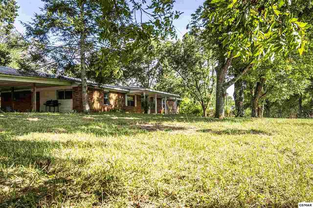 858 Leadvale Church Rd, White Pine, TN 37890 (#230012) :: Tennessee Elite Realty