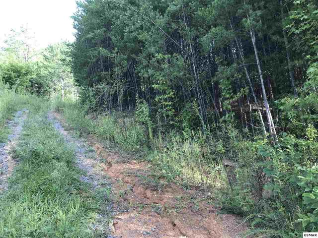 Lot 86 Yellowwood Dr., Sevierville, TN  (#230020) :: Four Seasons Realty, Inc