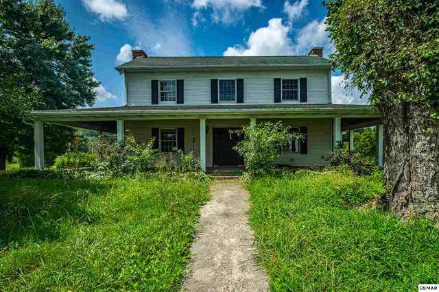 327 Alfred Mccammon Rd, Maryville, TN 37804 (#230030) :: Four Seasons Realty, Inc