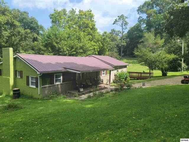 785 Musterfield  Rd, Newport, TN 37821 (#230035) :: Four Seasons Realty, Inc
