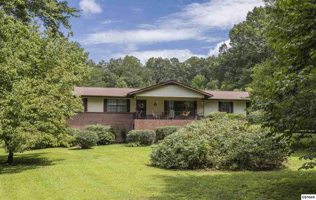 2170 Little Cove Rd, Sevierville, TN 37862 (#230044) :: Four Seasons Realty, Inc
