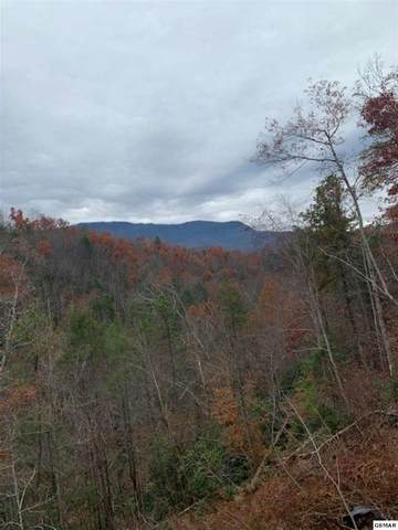 948 Vixen Run Cobbly Nob-Foxw, Gatlinburg, TN 37738 (#230049) :: Four Seasons Realty, Inc