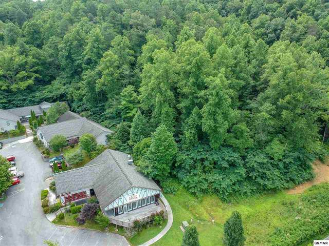 Tract 1 Glades Rd, Gatlinburg, TN 37738 (#230057) :: Jason White Team | Century 21 Legacy