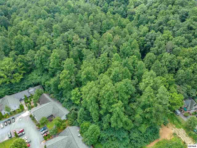 Tract 1 Glades Road, Gatlinburg, TN 37738 (#230058) :: Jason White Team | Century 21 Legacy
