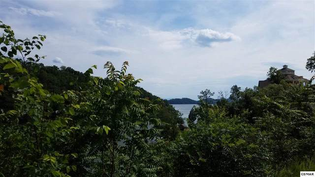Lot 28 Stone Shore Way, Dandridge, TN 37725 (#230060) :: Tennessee Elite Realty