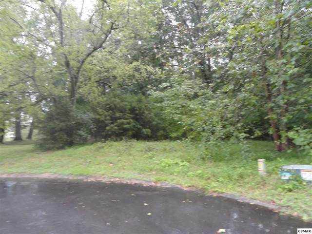 Lot 10 Stokley Ct, Dandridge, TN 37725 (#230064) :: Colonial Real Estate