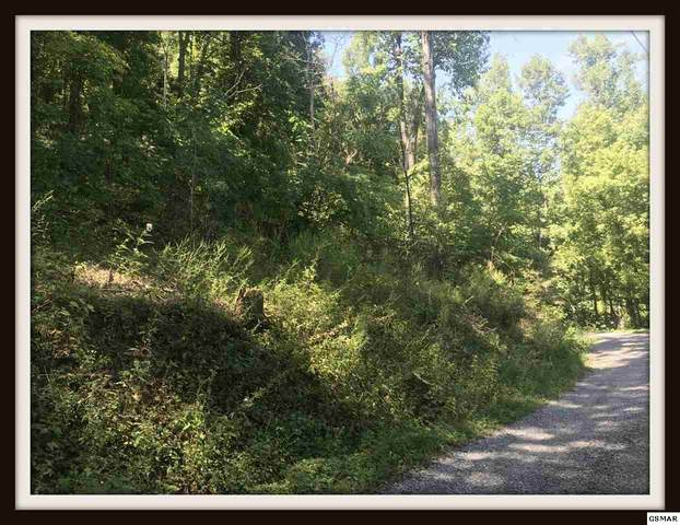 Lot Lonesome Pine Way 4.32 Acres, Sevierville, TN 37862 (#230072) :: Four Seasons Realty, Inc