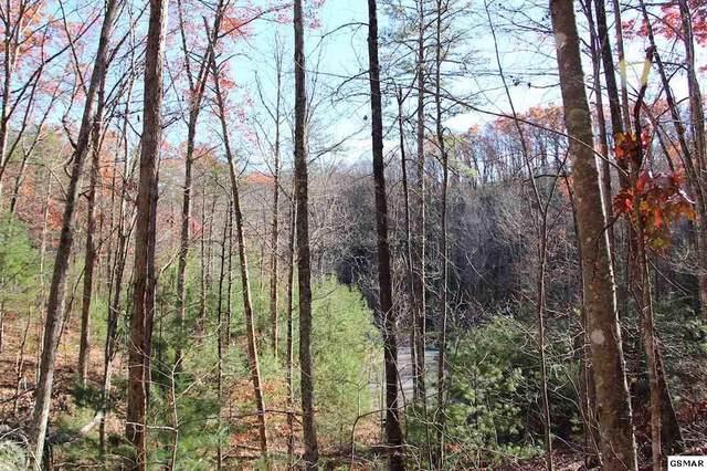 Lot 29E Cool Water Lane, Sevierville, TN 37862 (#230077) :: Jason White Team | Century 21 Four Seasons