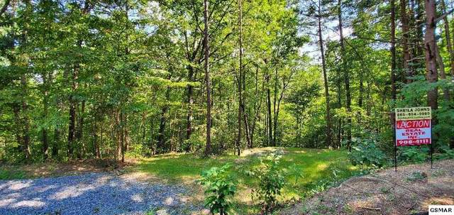 lot 3A W Gold Dust Dr, Pigeon Forge, TN 37863 (#230087) :: Four Seasons Realty, Inc