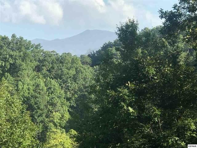 Lot Tr4 Chelan Way, Sevierville, TN 37876 (#230097) :: Four Seasons Realty, Inc
