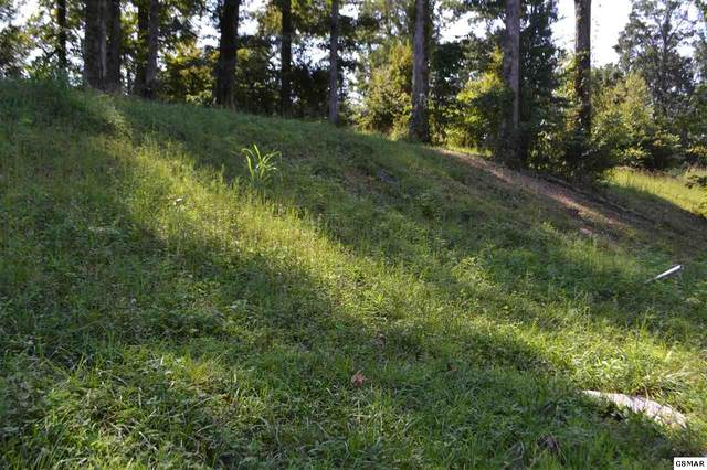 Infinity Lane Ridgewood Estat, Sevierville, TN 37862 (#230109) :: Four Seasons Realty, Inc