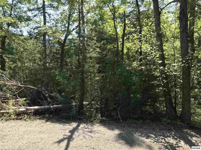 Lot 19 & 20 Roy Lee Way, Sevierville, TN 37865 (#230121) :: Colonial Real Estate