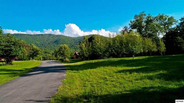 LOT 64 Schisandra Ln, Cosby, TN 37722 (#230123) :: Four Seasons Realty, Inc