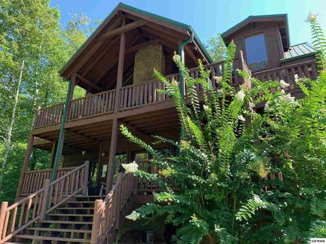 3325 Shagbark Hickory Rdg Fort Wilderness, Sevierville, TN 37862 (#230128) :: The Terrell Team