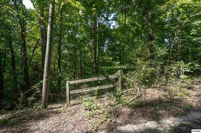 Lot 9 River Bluff Way, Sevierville, TN 37876 (#230133) :: Four Seasons Realty, Inc