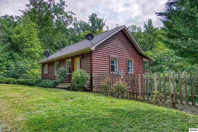 5033 Latta Way East Parkway, Gatlinburg, TN 37738 (#230144) :: Four Seasons Realty, Inc