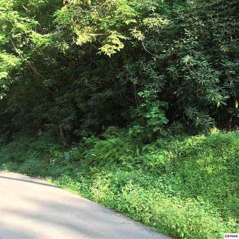 Lot #30 N Baden Dr., Gatlinburg, TN 37738 (#230153) :: Four Seasons Realty, Inc
