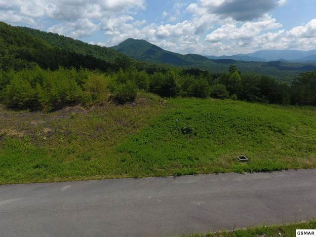 Lot #39 Mountain Ash Way, Sevierville, TN 37876 (#230160) :: The Terrell Team