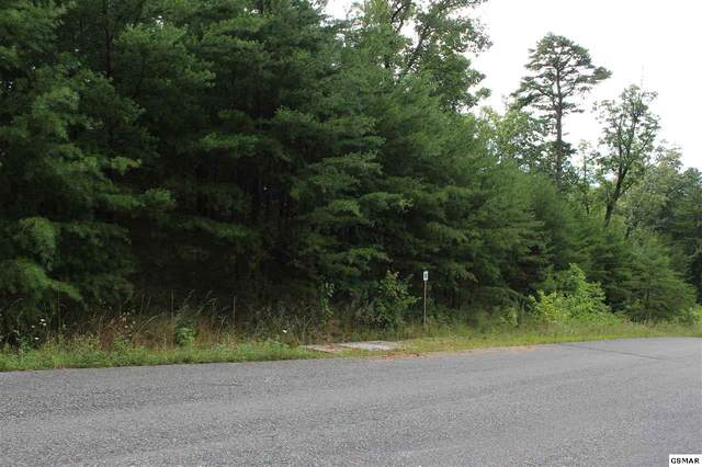 Lot #52 Mountain Ash Way, Sevierville, TN 37876 (#230161) :: Four Seasons Realty, Inc