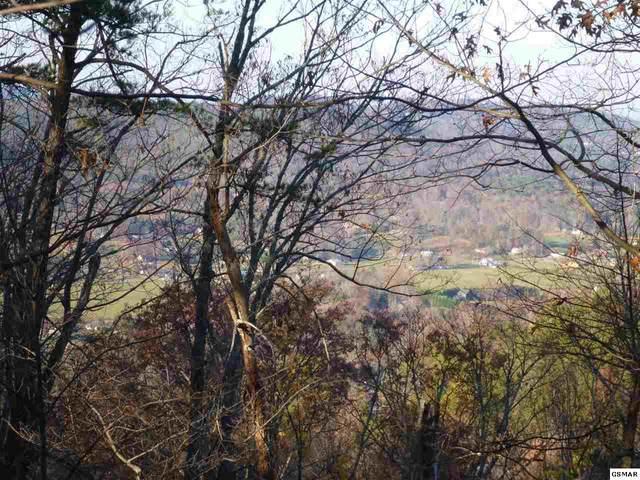 Lots Lots 3 & 4 High Ridge Way, Sevierville, TN 37862 (#230188) :: The Terrell Team