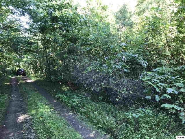 Lot 2 Coy Rhea Way, Sevierville, TN  (#230189) :: Four Seasons Realty, Inc