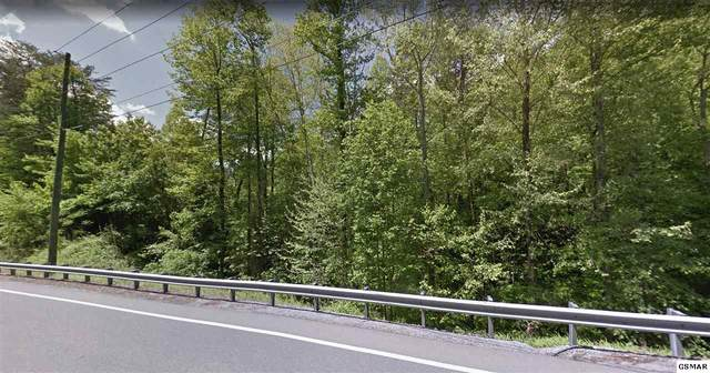 Lot 14 Birds Creek Road, Sevierville, TN 37876 (#230194) :: Colonial Real Estate
