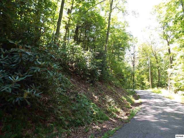 Par. 1.0 & 2.0 Red Bud Rd, Sevierville, TN  (#230208) :: Four Seasons Realty, Inc