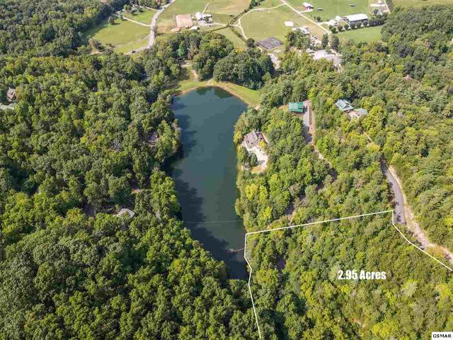 Lot 21 Marian Lake Way Little Greenbri, Sevierville, TN 37862 (#230215) :: The Terrell Team