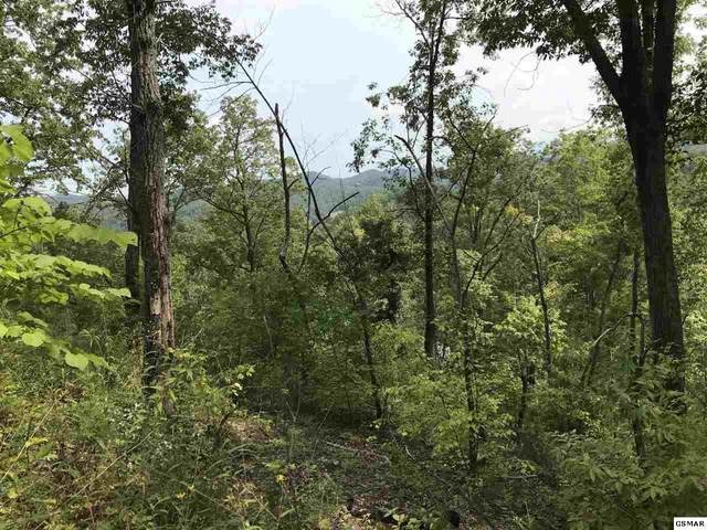 Lot 14 Lonesome Pine Way, Sevierville, TN 37862 (#230220) :: The Terrell Team