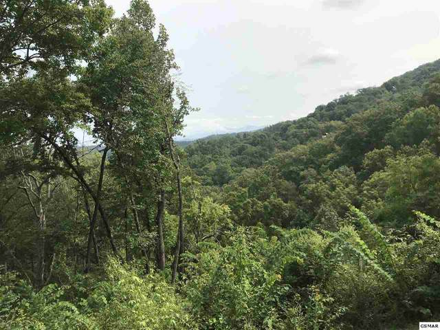 Lot 18 Lonesome Pine Way, Sevierville, TN 37862 (#230223) :: The Terrell Team